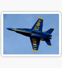 U.S. Navy flight demonstration squadron, the Blue Angels. Sticker