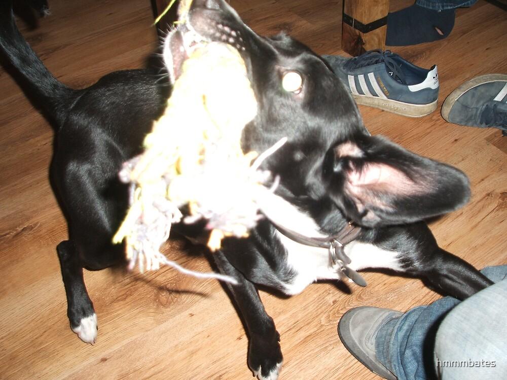 mad dog by hmmmbates