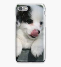 Pembroke Welsh Corgi Puppy iPhone Case/Skin