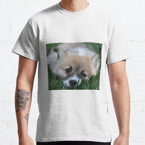 Pembroke Welsh Corgi Puppy Classic T-Shirt