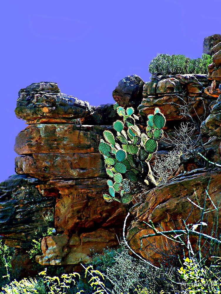 Sedona Rocks by AndyReeve