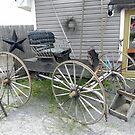The Old Wagon by Martha Medford