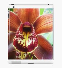 Orchid from the Plaza Florist iPad Case/Skin