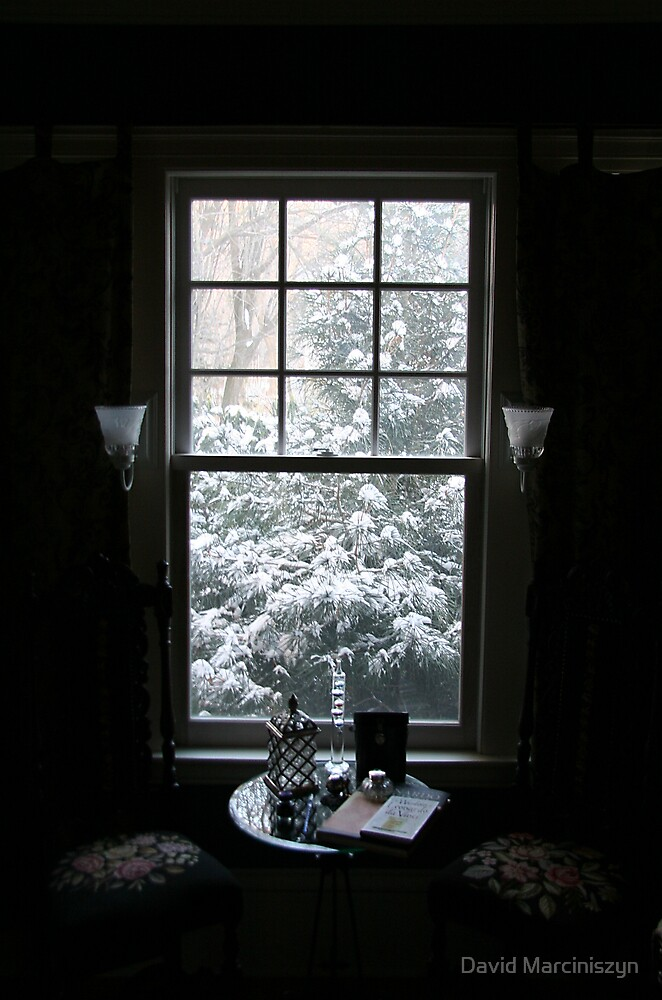 A View of the Snow From My Window by David Marciniszyn