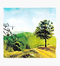 Watercolor illustration The Golden Valley Photographic Print