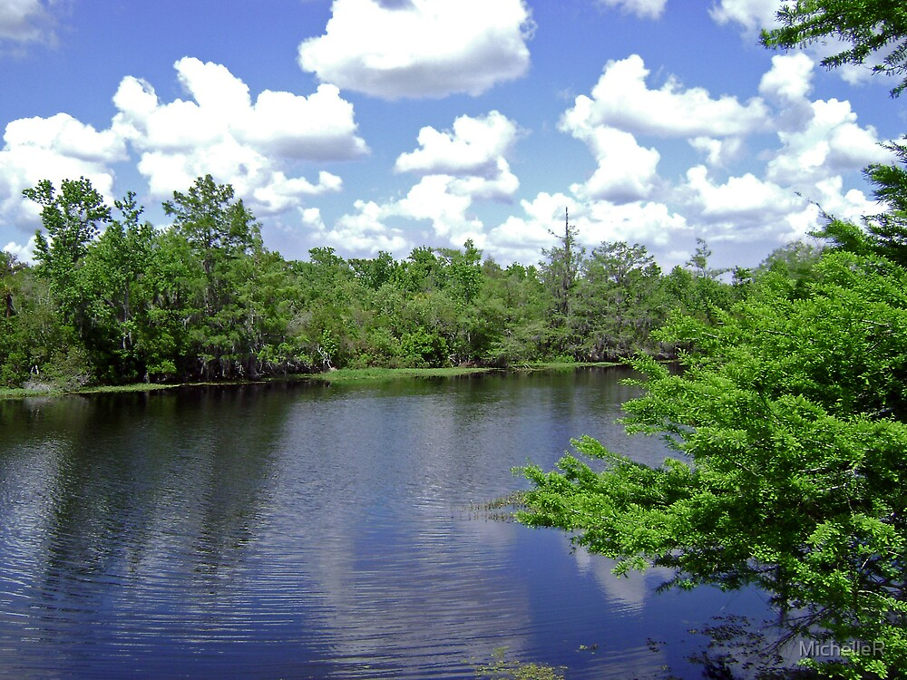 Florida River by MichelleR