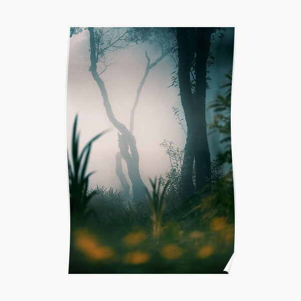 Misty Woods Poster