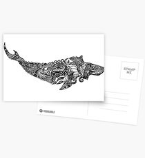 Whale drawing by Floris V Postcards