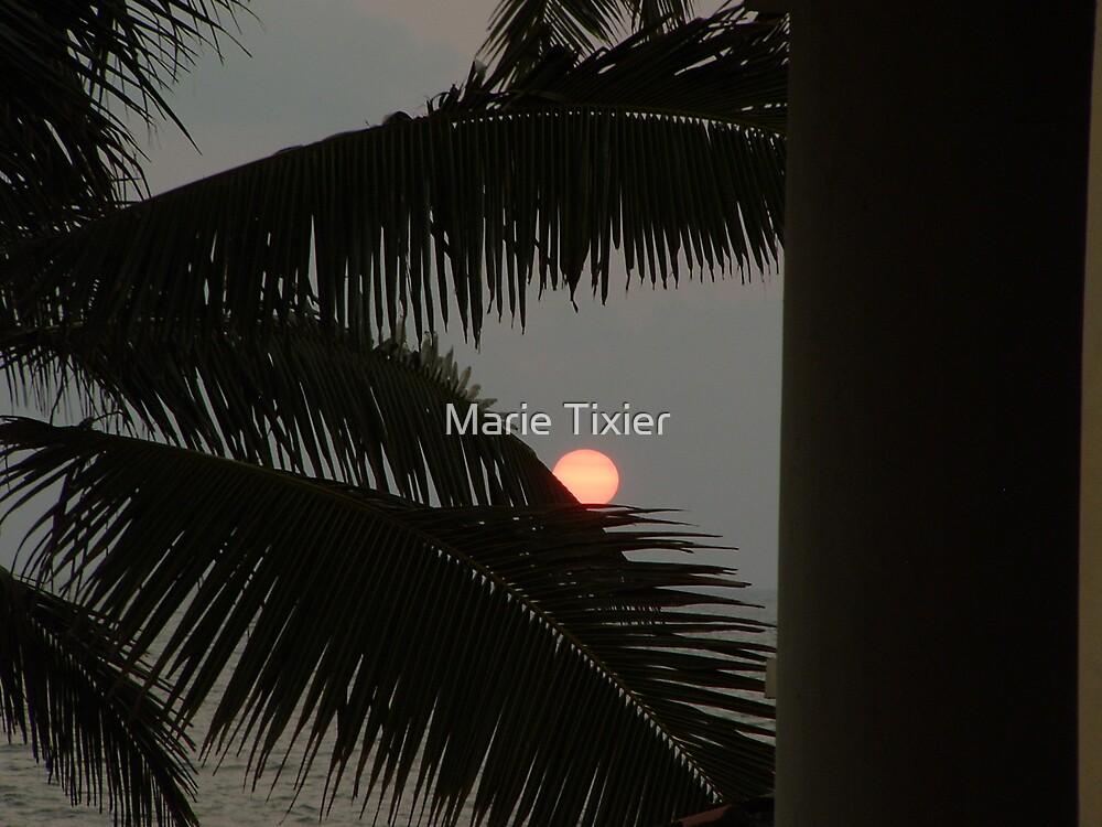 orange sun by Marie Tixier