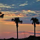 Palm Trees At Sunset by Cynthia48