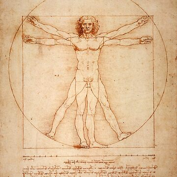 Vitruvian Man, Leonardo da Vinci by fourretout