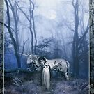 The Meeting in The Woods by Angie Latham
