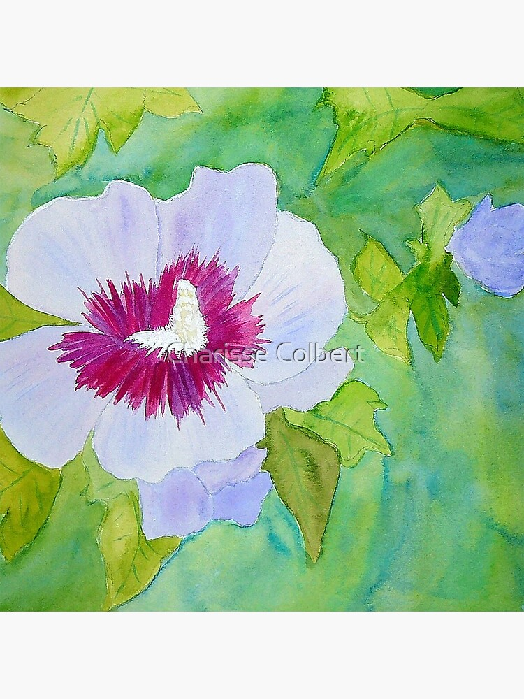 Rose of Sharon by charissecolbert