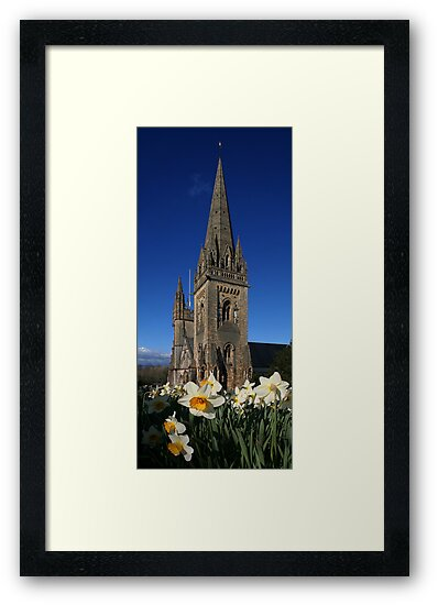 Llandaff Cathedral and Daffodils by Anthony Thomas