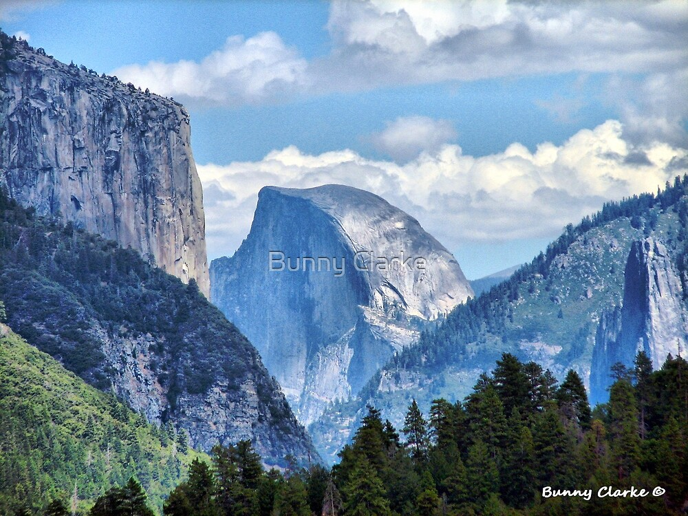 Valley View of El Capitan and Half Dome  (4433 views as of 062217) by Bunny Clarke