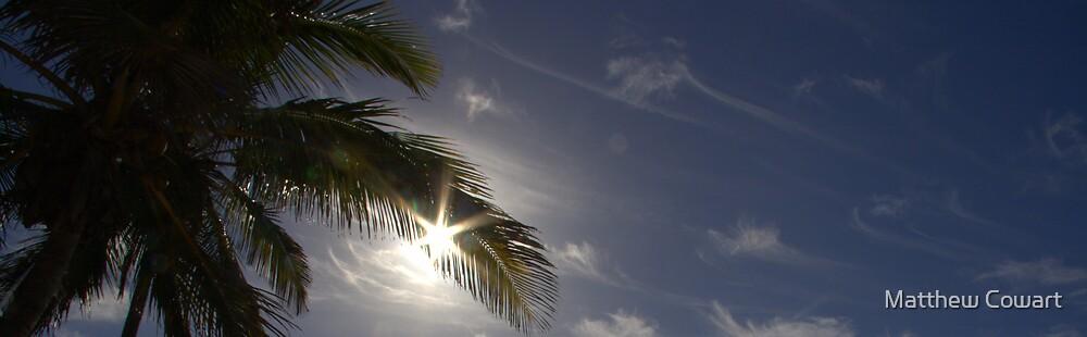 The Palm Sky by Matthew Cowart