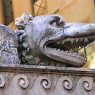 Florence Fountain by michelle123
