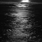 OCEAN STREET LIGHT SHIMMER by Dors