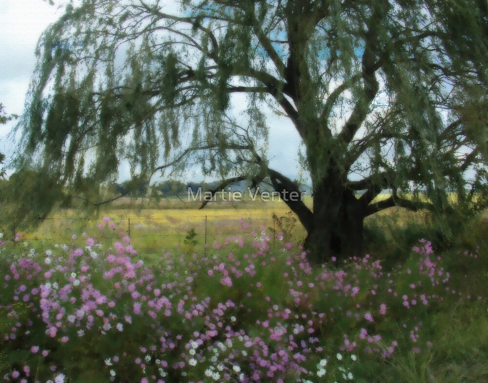 Beneath the Willow Tree by Martie Venter