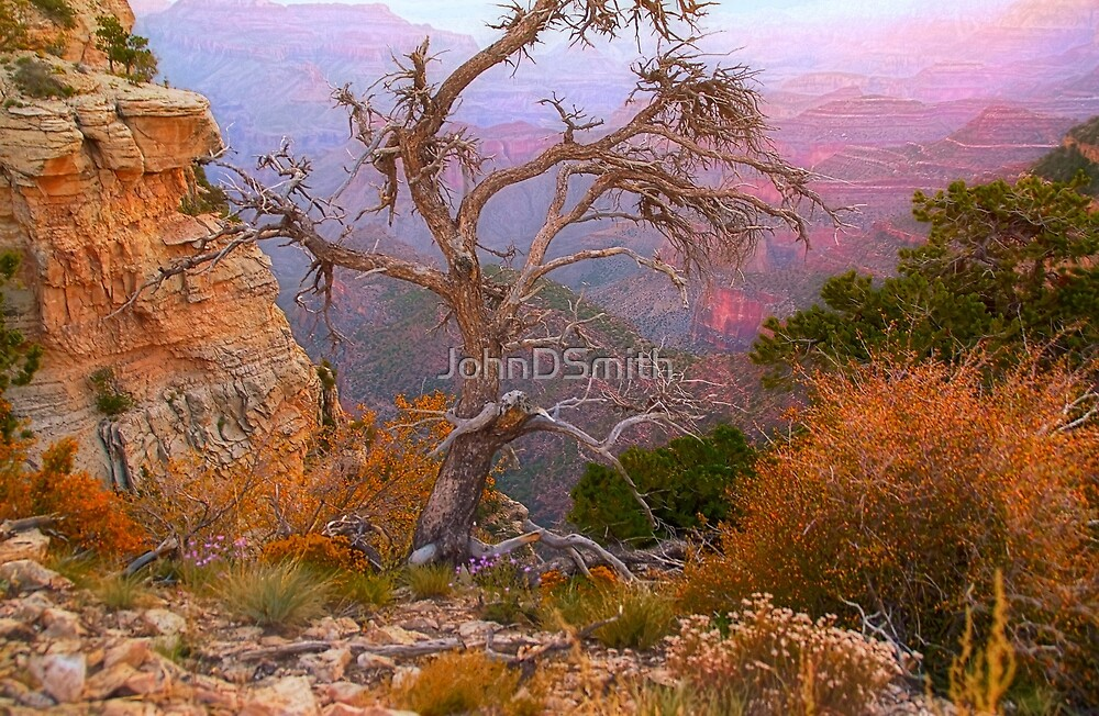 Lay My Ashes Here by JohnDSmith