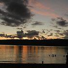 Evening Swim off Efate. Vanuatu by hans p olsen