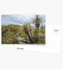 Mt Lesueur 2 Postcards
