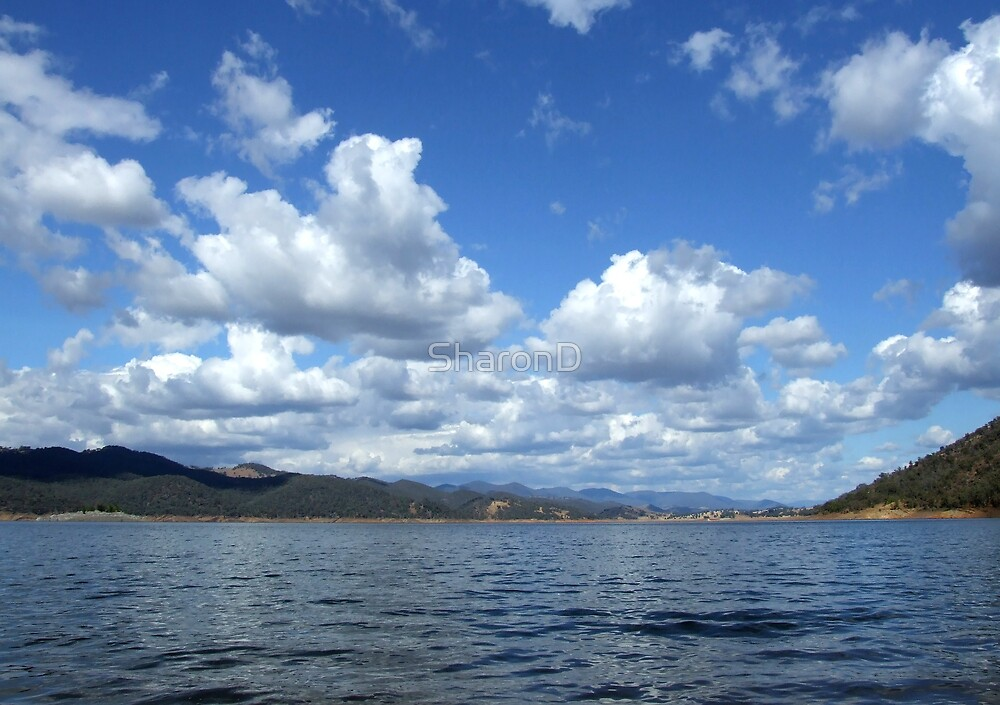 Across the Water at Burrinjuck Dam by SharonD