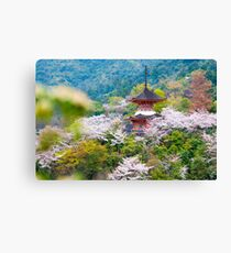 Miyajima Island Canvas Print