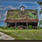 Leaky Roof by Sheryl Gerhard