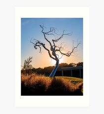 Barren Light - Crystal Bridges Museum of American Art Art Print