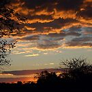 "TYPICAL ""BUSHVELD"" SUNSET von Magriet Meintjes"