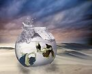 2 Lost Souls Living in a Fishbowl by Linda Lees