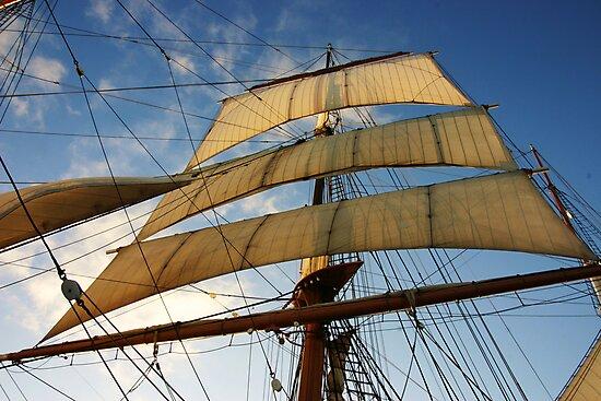 Sunlit Sails by Barbara  Brown