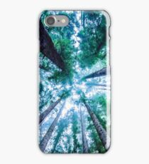 Redwood Forest Heights iPhone Case/Skin