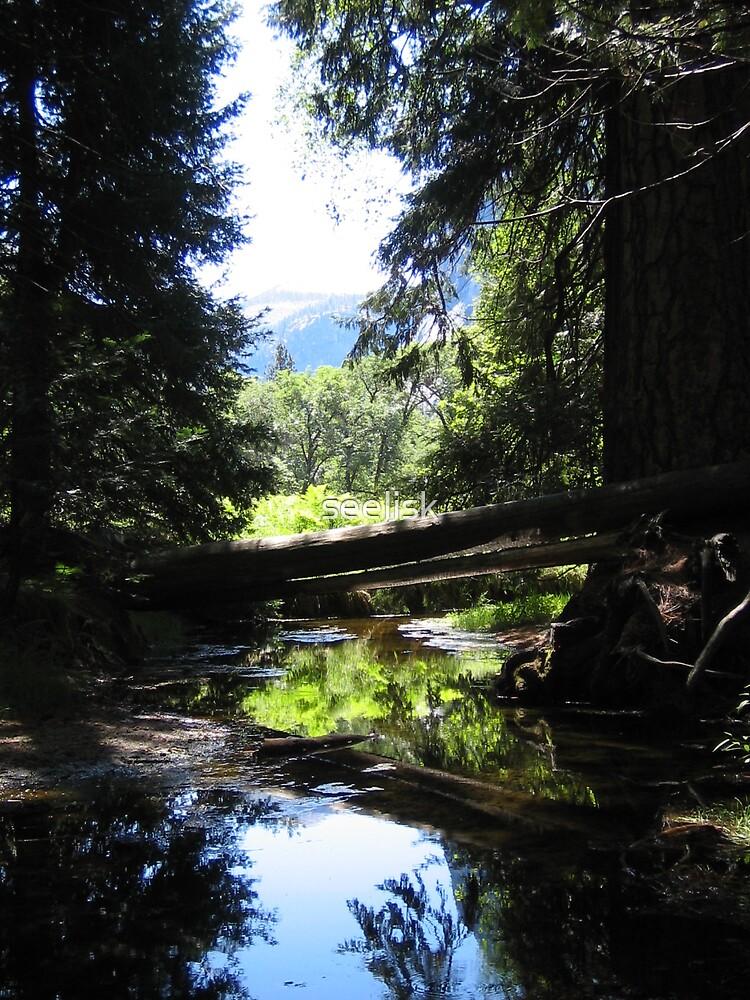 Reflecting at Yosemite by seelisk