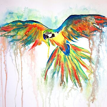 Watercolor Parrot by SusanaGuaderram