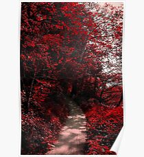 Into the Bloodred Forest Poster