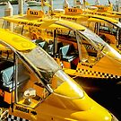 Yellow Taxi Boats by wallarooimages