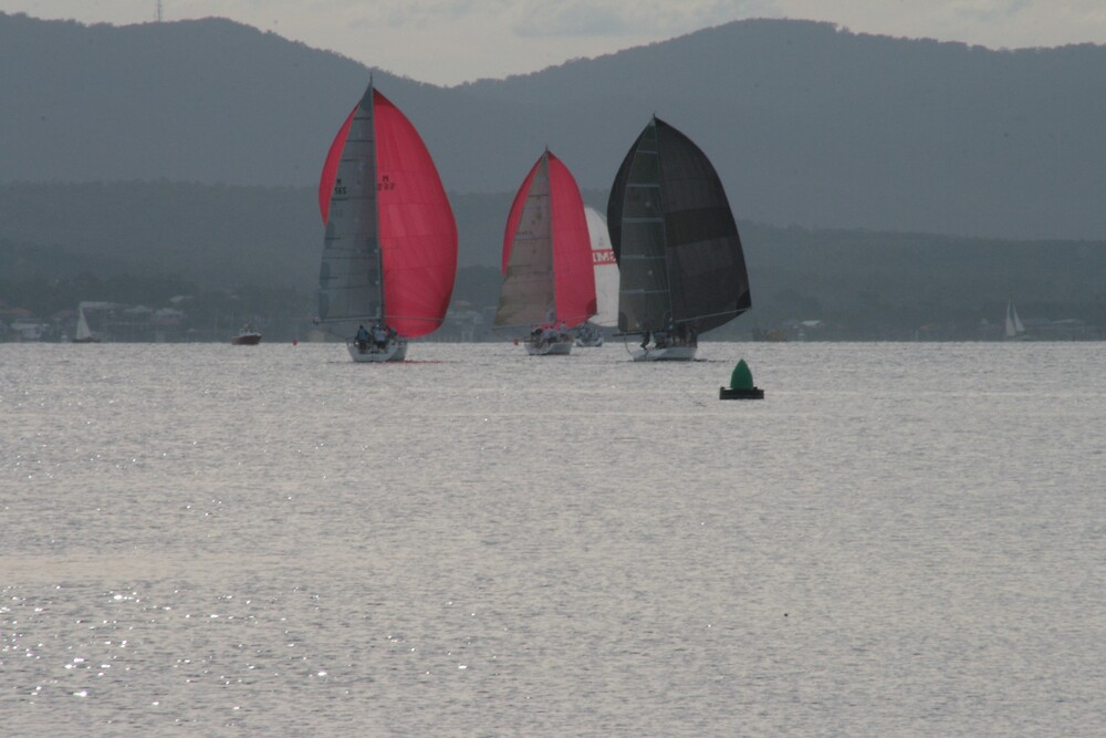 Red Sails by Norma Blackburn