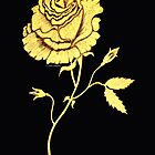 Golden Rose  by Linda Callaghan