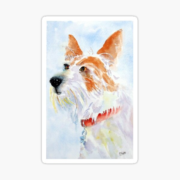 Paddy the jack russell terrier Sticker