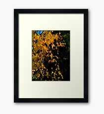 Gold Tree with Green Trees Framed Print