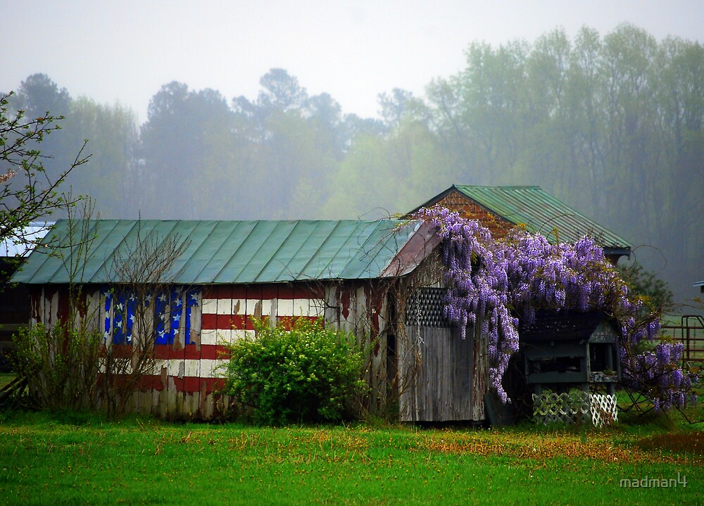 Patriotic Shed by madman4