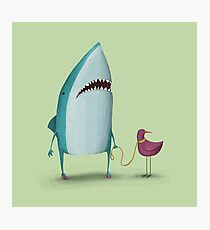 Shark and friend Photographic Print