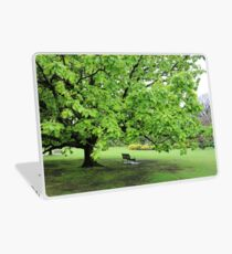 Chestnut Tree Laptop Skin