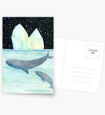 Coole Wale in der Antarktis Postkarten