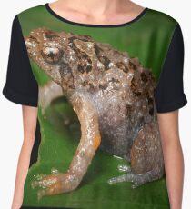 Bornean treehole frog Metaphrynella sundana Women's Chiffon Top