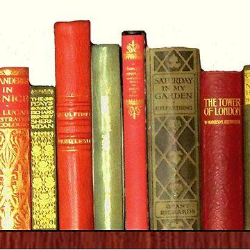 Bibliophile Vintage Library by MagentaRose