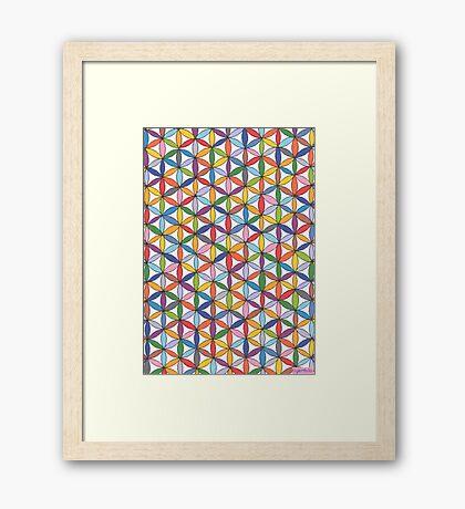 1904 - Circle Webbing In Colorful Harmony Gerahmtes Wandbild