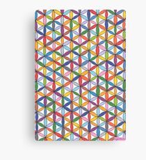 1904 - Circle Webbing In Colorful Harmony Canvas Print